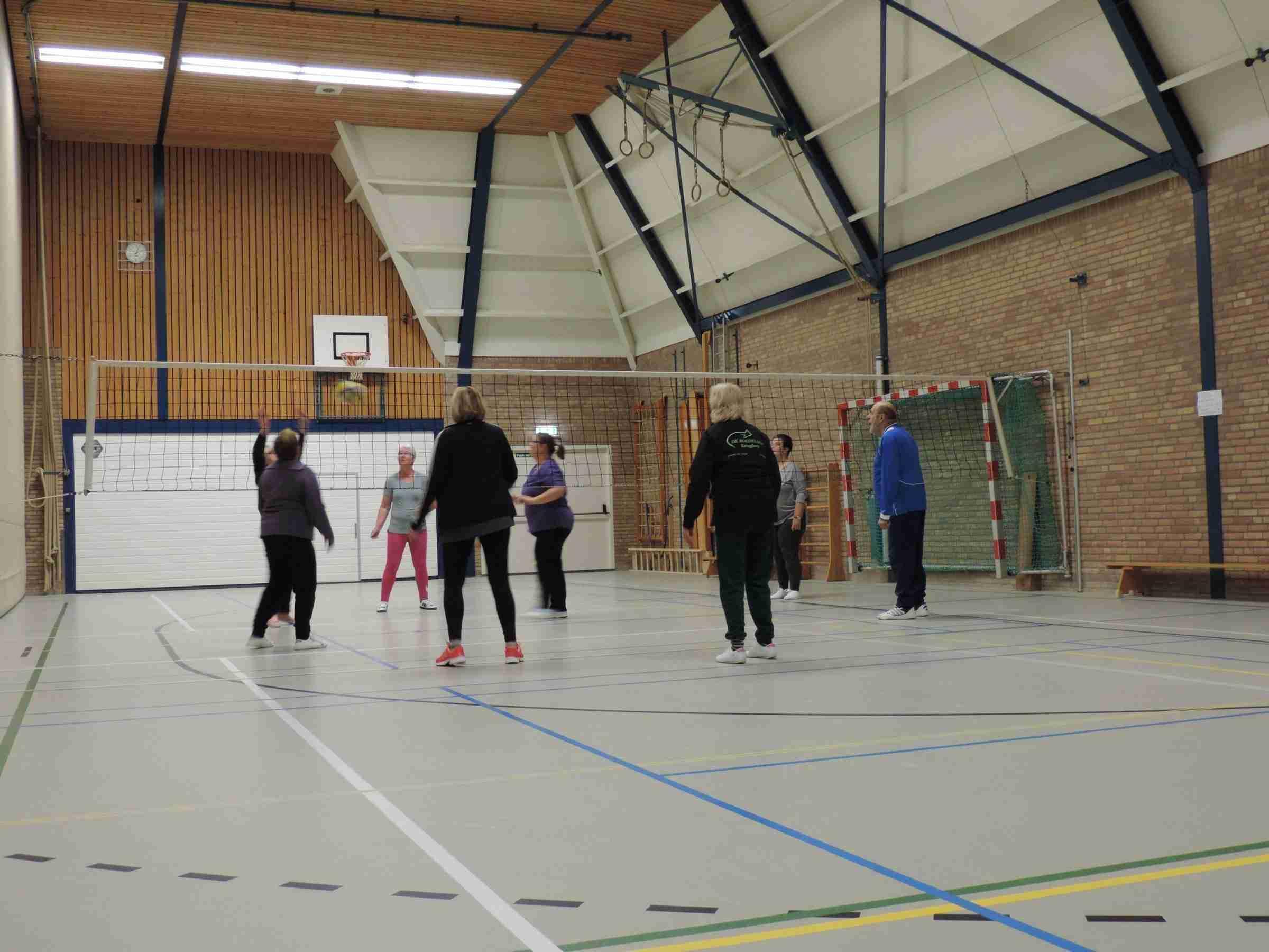 Volleybal Welzijn stopt